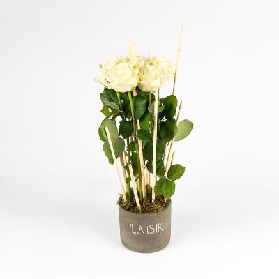 Compo hauteur botte roses rouges/blanches